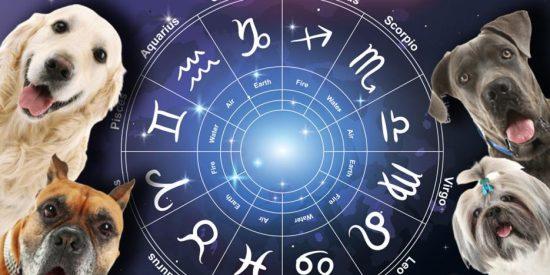 Horóscopo: salud, dinero y amor este 4 de julio de 2021