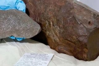 Un hombre guarda esta roca desde 2015 creyendo que contenía una pepita de oro y resulta ser un extraño meteorito
