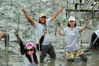 Plantan mil árboles en la única costa de Bangkok