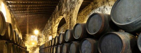 Castilla y León apuesta por el Enoturismo en FITUR