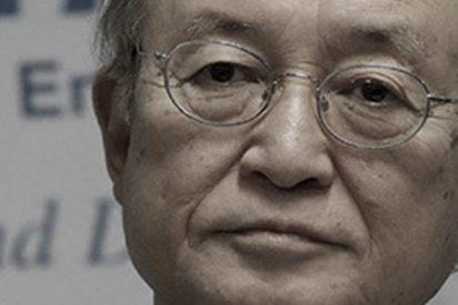 Muere el director general del Organismo Internacional de Energía Atómica, Yukiya Amano
