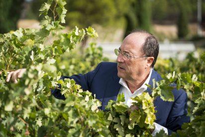 Carlos Moro refuerza su apuesta por Galicia con la adquisición de una bodega en la DO Ribeiro