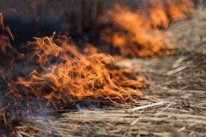 Los pirómanos no son la causa de los grandes incendios forestales