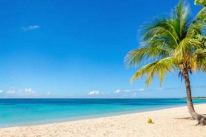 La asquerosa foto que demuestra lo guarros que son algunos en la playa