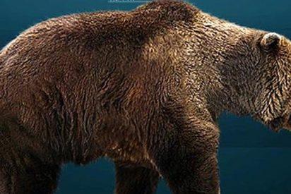 ¿Sabes cuál fue la primera especie extinguida por los humanos?