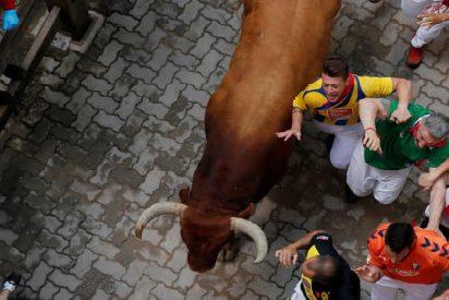 Un joven corredor es empitonado en el abdomen y el muslo en un encierro tradicional español