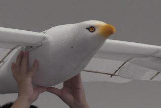 La última chorrada Made in China: ¡un dron en forma de gaviota!