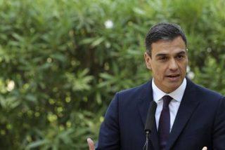 El curioso fondo elegido por Sánchez para atender a la prensa ha desatado el éxtasis en Twitter