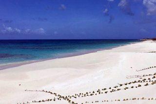 Así es Barbuda, la isla en la que la tierra no es de propiedad privada