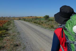 Guía para el Peregrino: ¿Hay que llevar concha para hacer el Camino de Santiago?
