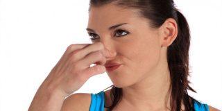 ¿Flatulencias? ¡Mejora tu dieta sin excluir alimentos imprescindibles!