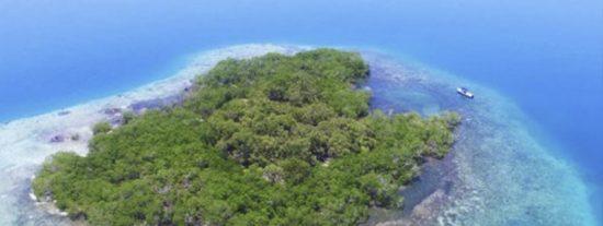 ¿Sabías que te puede comprar esta isla en el Caribe por menos dinero que un piso en Madrid o Barcelona?