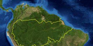 """Incendios en el Amazonas: 3 razones por las que esta región es tan importante aunque no sea """"el pulmón del mundo"""")"""
