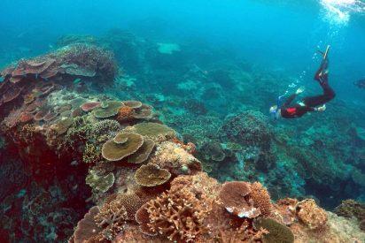 La isla de piedra pómez del tamaño de Manhattan que viaja por el océano Pacífico
