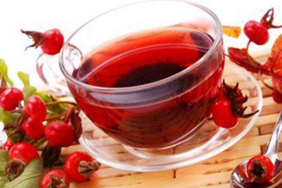 ¿Conoces todas las propiedades del té de rosa mosqueta?