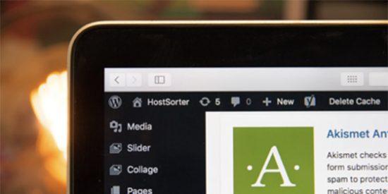 La importancia del hosting en proyectos online