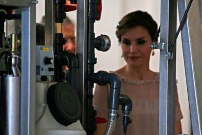 Impacto en Casa Real: filtran un vídeo íntimo e inapropiado de Doña Letizia 'cazada' de la peor manera