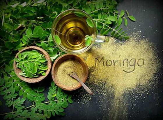 Propiedades de la Moringa Oleifera