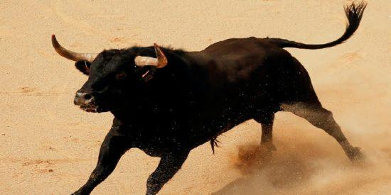17 espectadores corneados por un toro que saltó a la tribuna en una fiesta en Gerona