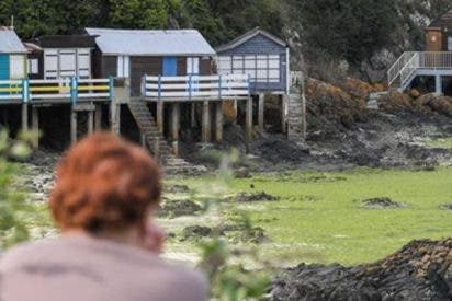 Así es el «fango asesino» que puede matar a una persona en segundos y ha aparecido en varias playas de Francia