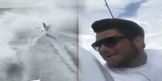 Así fue la sentencia que recibió este hombre que arrastró a un tiburón hasta la muerte en video viral