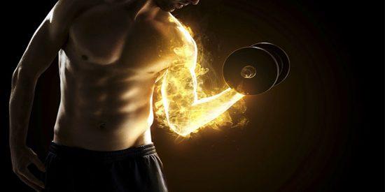 ¿Sabes cuál es la razón por la que sentimos quemazón cuando entrenamos un músculo?