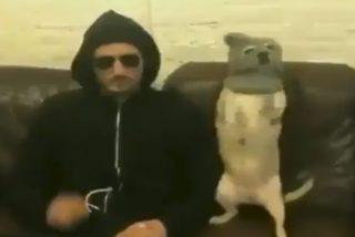 Vídeo Viral: la mascota no sólo se parece siempre a su dueño, sino que también se comporta con él