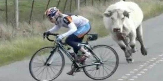 Bicicleta: 10 momentos espectaculares sobre la dureza del ciclismo