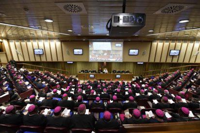 El Sínodo sobre la Amazonía reunirá a más de 250 participantes e invitados especiales