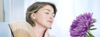 ¿Calores por la menopausia? Esta infusión te ayudará a combatir el sofocón
