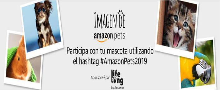 Concurso Amazon Pets 2019