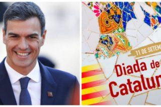 """Inflan a zascas a Pedro Sánchez por celebrar la Diada de los golpistas: """"Inútil, irás a la oposición y Begoña al paro"""""""