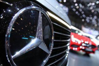 ¿Por qué un caracol frustró la importación a Australia de 900 Mercedes Benz?