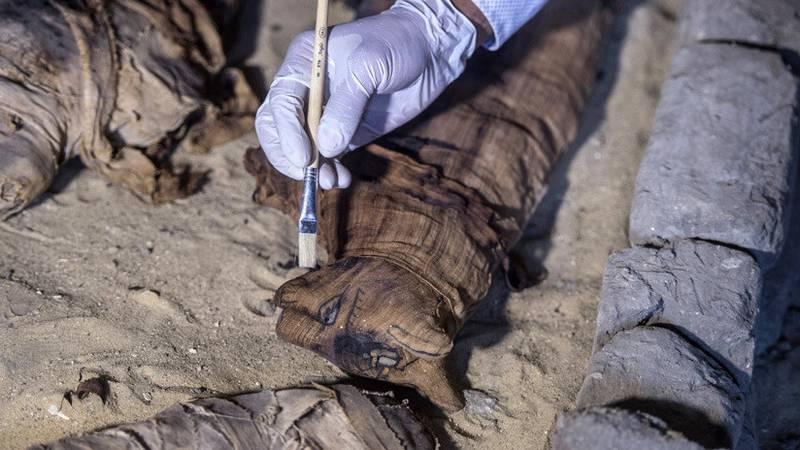 Abren una antigua momia de gato egipcia y se llevan una gran sorpresa al ver su contenido