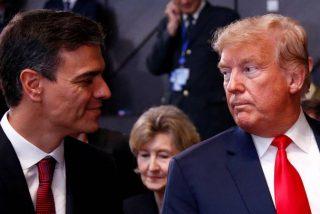 Trump ya estudia sanciones contra la España de Pedro Sánchez y el PSOE por su apoyo financiero al dictador Maduro
