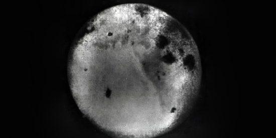 Chang'e 5 logra recolectar y sellar las muestras lunares que traerá a la Tierra