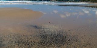 Bolsonaro afirma que el petróleo derramado en un centenar de playas no es propiedad de Brasil