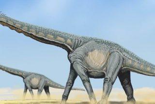 Descubren huellas de dinosaurios de hace 100 millones de años en China
