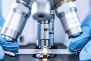 Descubren un virus que desafía la noción científica