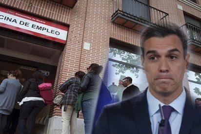'El desastre económico y realidad del PSOE de Sánchez': El paro sólo baja en 16.200 personas en verano y el empleo sólo crece en 69.400, los peores datos desde 2012 y 2013
