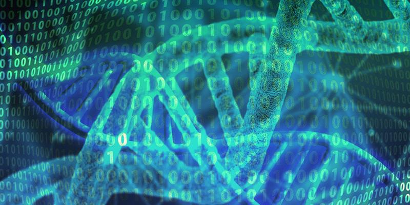 Esta nueva técnica de edición genética corrige el 89% de las mutaciones del ADN