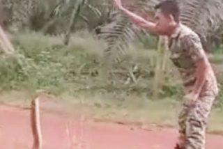 Este soldado se topa con la serpiente venenosa más grande del mundo y su forma de dominarla quita el aliento