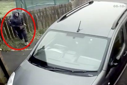 Este torpe ladronzuelo intenta robar un coche y recibe un 'karma' instantáneo en forma de ladrillazo en toda la cara