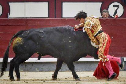 Gonzalo Caballero sufre una espeluznante cornada al entrar a matar a su primer toro en Las Ventas