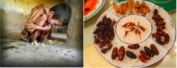 """Manuel del Rosal: """"El próximo 10N, la FAO y el hambre"""""""