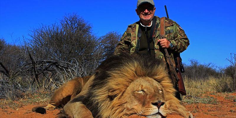 Polémica oferta: Una empresa de safari propone cazar a una leona gratis si logras matar a un león