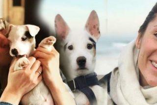 Sandra Barneda y Nagore Robles: en pie de guerra por la custodia de un perro