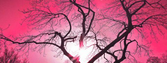 Se topa mientras circulaba con su coche con este gigantesco resplandor rosa que ilumina el cielo nocturno
