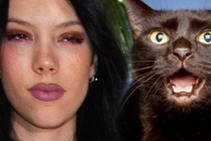 Toda la verdad tras la criticada foto de la hija de Terelu Campos, Alejandra Rubio, y su gato
