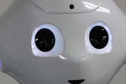 Una compañía busca candidato para prestar su rostro a una serie de robots; el elegido ganará 28.000 dólares 'por la cara'
